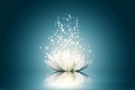 miracles: Magic Lotus flower