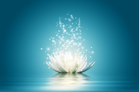 papel tapiz turquesa: Magia Flor de loto