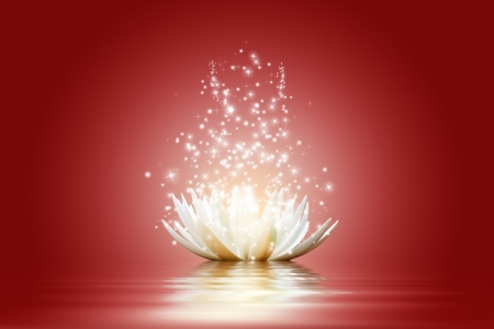 Magic Lotus flower Stock Photo - 15774555