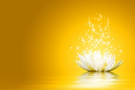 Magische bloem van Lotus