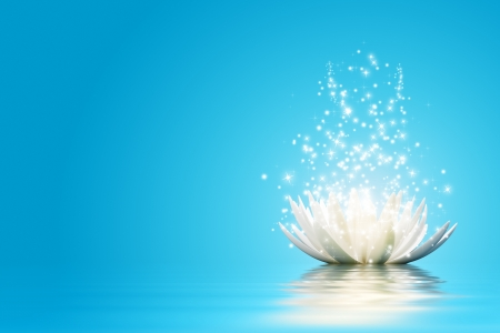 Magic Lotus flower Stock Photo - 15810063