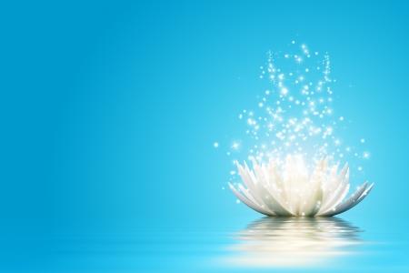 lotus leaf: Magic Lotus flower