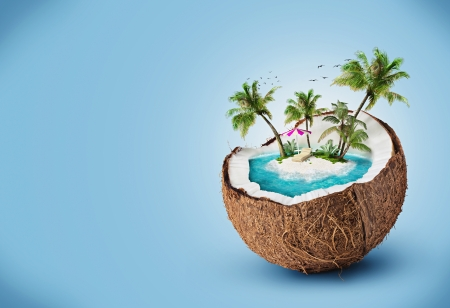 tropical island in coconut  Travelling, vacation Stock Photo