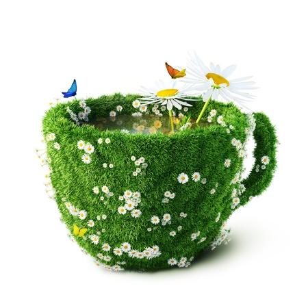 plantas medicinales: Taza del té de hierbas y alimentación saludable camomiles