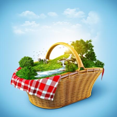 Beautiful nature in the basket. Rest out of town