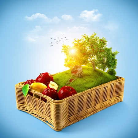food collage: Fresh fruits in the basket  Summer collage Stock Photo