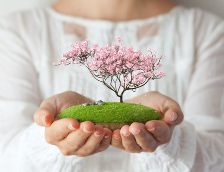 Small fantastic island with pink tree in womens hands. Sakura