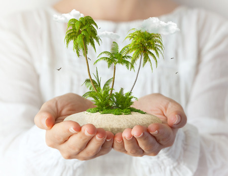 summer holidays: Small fantastic island with  palms in women