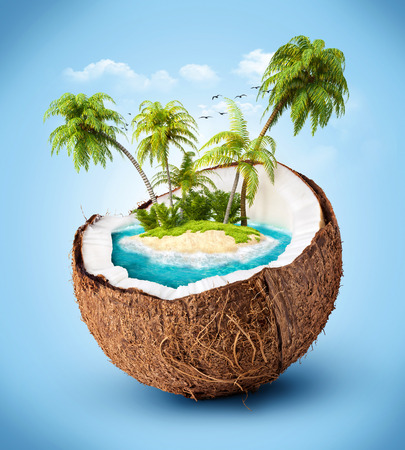 coconut water: tropical island in coconut  Travelling, vacation Stock Photo