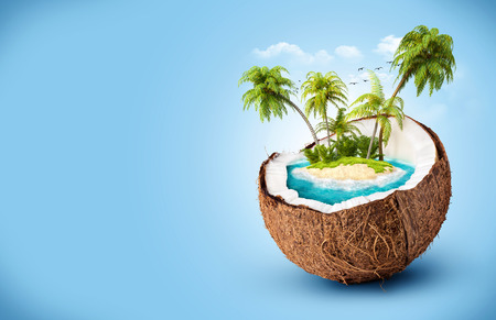 tropical island in coconut. Travelling, vacation photo