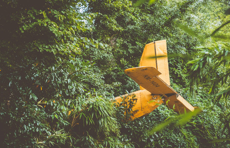 plane: Crashed airplane in a jungle