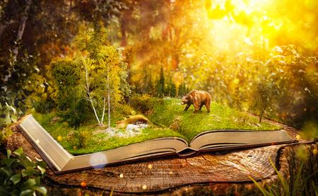 estaciones del año: Libro abierto con el bosque salvaje y oso en las páginas. -lista en peligro las especies. Ilustración 3D inusual Foto de archivo