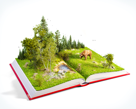 Opened red book with wild forest and bear on pages. Endangered-species list. Unusual 3D illustration. Isolated