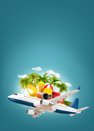 luggage travel: Passenger airplane, tropical palm, luggage, passports and camera in the sky. Unusual travel 3d illustration. Summer vacation and air travel concept Stock Photo
