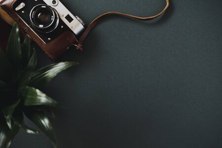 Top view of a flat lay film camera in a case lies on a black table next to a plant in a pot. Concept of workspace of a photographer or amateur. Advertising space 版權商用圖片