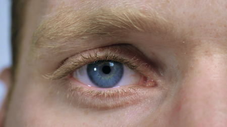 macro view male blue eye. close up nordic male face with pale skin