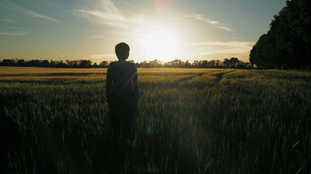 Woman standing at field with young wheat at sunset. Rear back view female looking on the evening sky with breathtaking sundown. Unit with nature in summer season.