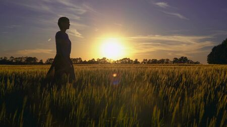 Woman walking around field with young wheat at sunset. Female going in the rays of the setting sun. Lady clothes are flying in the wind. the evening sky with breathtaking sundown.