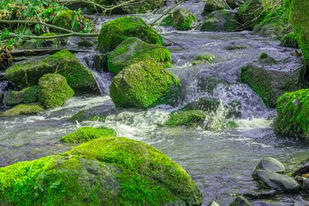 mountain river, stones covered with green moss