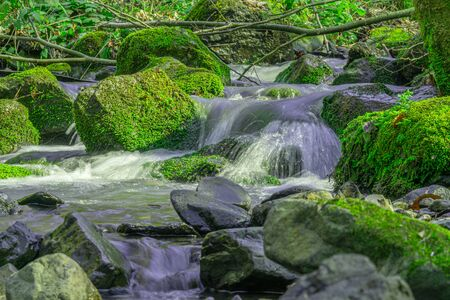 clean mountain river in spring, stones covered with green moss
