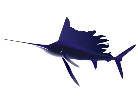 The figure shows a fish marlin in mesh Illustration