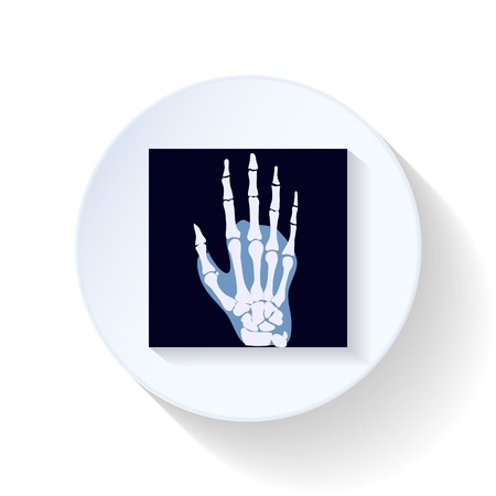 X-ray photograph flat icon illustration graphic design Vector