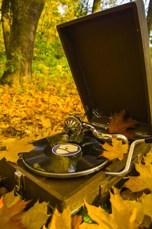 old gramophone on the background of autumn leaves