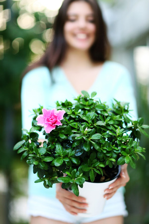 Closeup portrait of a woman holding flower in a pot. Focus on flowers photo