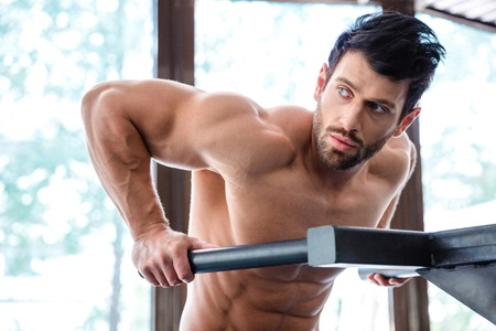 musculation: Portrait of a handsome male bodybuilder workout on parallel bars in fitness gym