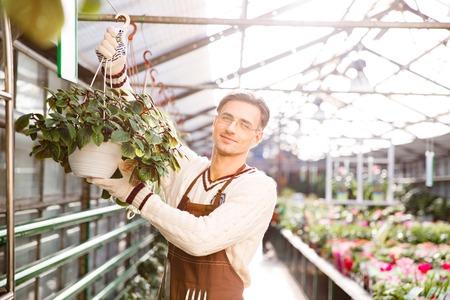 hanging flowers: Smiling man gardener working and hanging flowers in pots in garden center