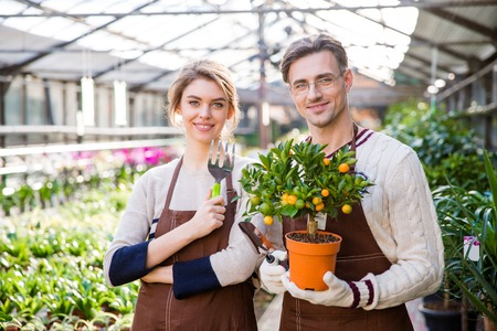 citrus family: Happy attractive woman and man gardeners holding small mandarine tree and tools for plants transplsntation in garden center