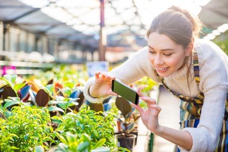 invernadero: Feliz mujer joven jardinero toma el cuadro de las plantas verdes y flores en invernadero con smartphone Foto de archivo