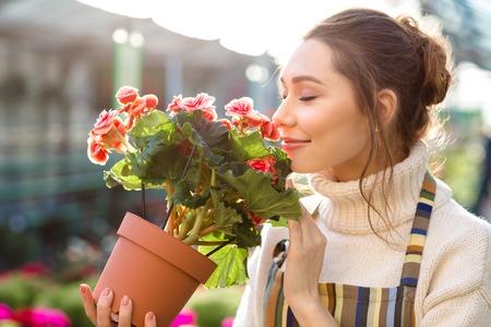 invernadero: Inspirado mujer joven sonriente florister�a Flores que huelen de la begonia en invernadero Foto de archivo