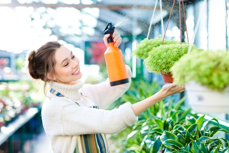 pleased: Pleased pretty young woman gardener spraying flowers and plants in greenhouse