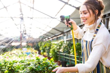 Happy pretty woman gardener in uniform watering plants with garden hose in greenhouse Banque d'images