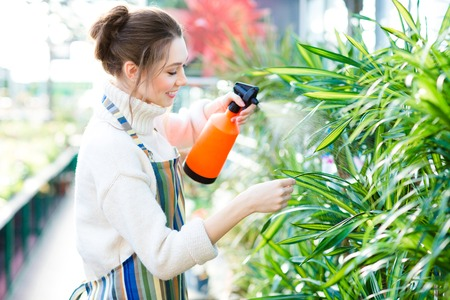 pulverizer: Beautiful cheerful young woman gardener in colorful apron spraying flowers and plants using water pulverizer in garden center Stock Photo