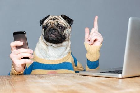 携帯電話を使用し、グレーの背景縞模様のセーターに手を男とかわいいパグ犬