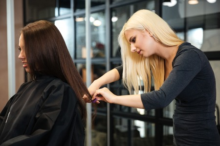 haircutting: Young female hairstylist doing a haircut to a client in beauty salon