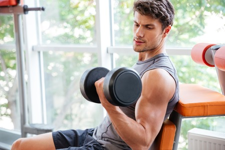 musculation: Concentrated young sportsman doing exercises for biceps using dumbbells in jym