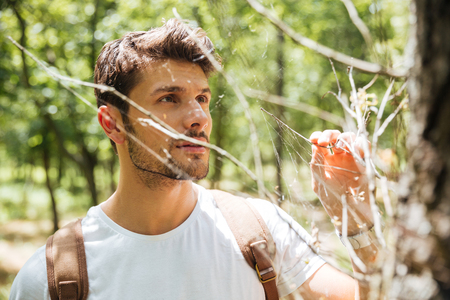 Handsome young man standing and looking at cobweb in forest