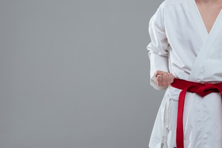 sensei: Cropped photo of young sportsman dressed in kimono practice in karate isolated over grey background.