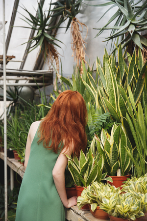 Back view of redhead young girl standing near greenery
