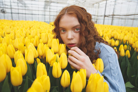 Redhead girl hiding in fielf of yellow flowers in orangery Stock Photo