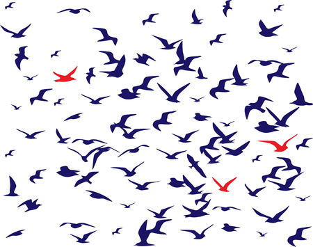 bird silhouettes pattern over white. Vector illustration