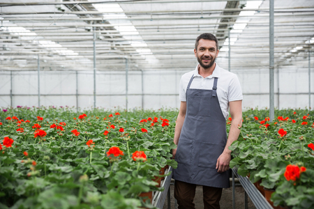 Photo of cheerful young man standing in greenhouse near plants. Looking camera. Stockfoto