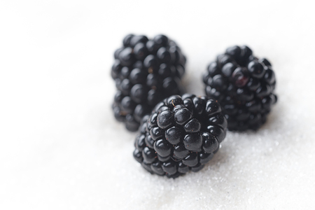 Image of sweet blackberry isolated over white sugar background. Stok Fotoğraf