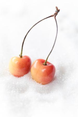 달콤한 체리 설탕 흰색 배경 위에 절연의 이미지. 스톡 콘텐츠