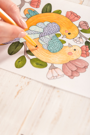 Top view of artist painting beautiful design picture of birds with markers on paper
