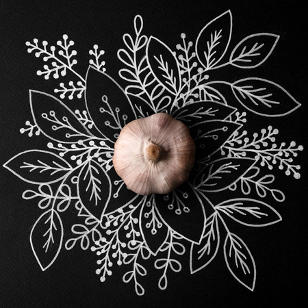 Whole garlic over outline floral hand drawn background
