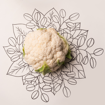 Cauliflower over outline floral hand drawn background